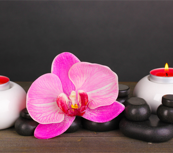 Asian Orchid with Pebbles