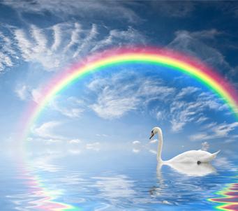 Beautiful Seascape with Rainbow