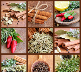 Spices 7