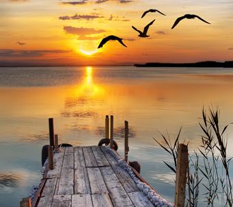 Sun Rise1