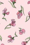 Wallpaper Pink Sweetpeas
